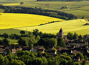 Burgundy wine your with Good Wine Tours