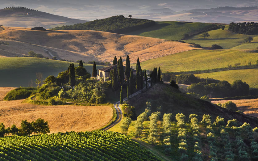 Find out about our Tuscan wine breaks