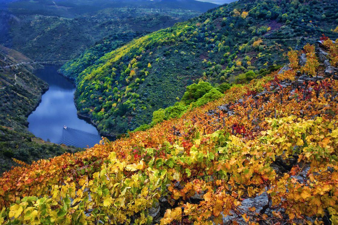 Wine break in Galicia, Spain