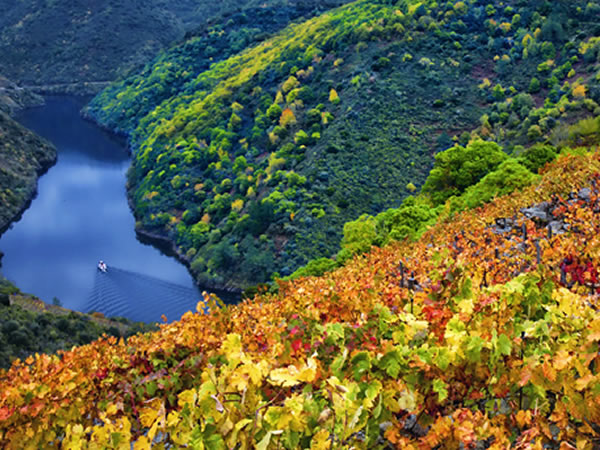 5 day wine tour of Galicia