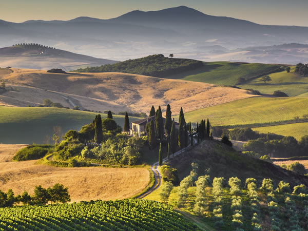 Learning about wine in Tuscany 2021