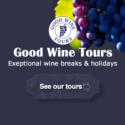Educational wine tours and wine breaks