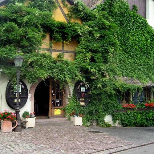 Alsace Becker
