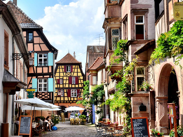 Alsace short break wine tour