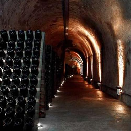 Chamapagen tour vaults